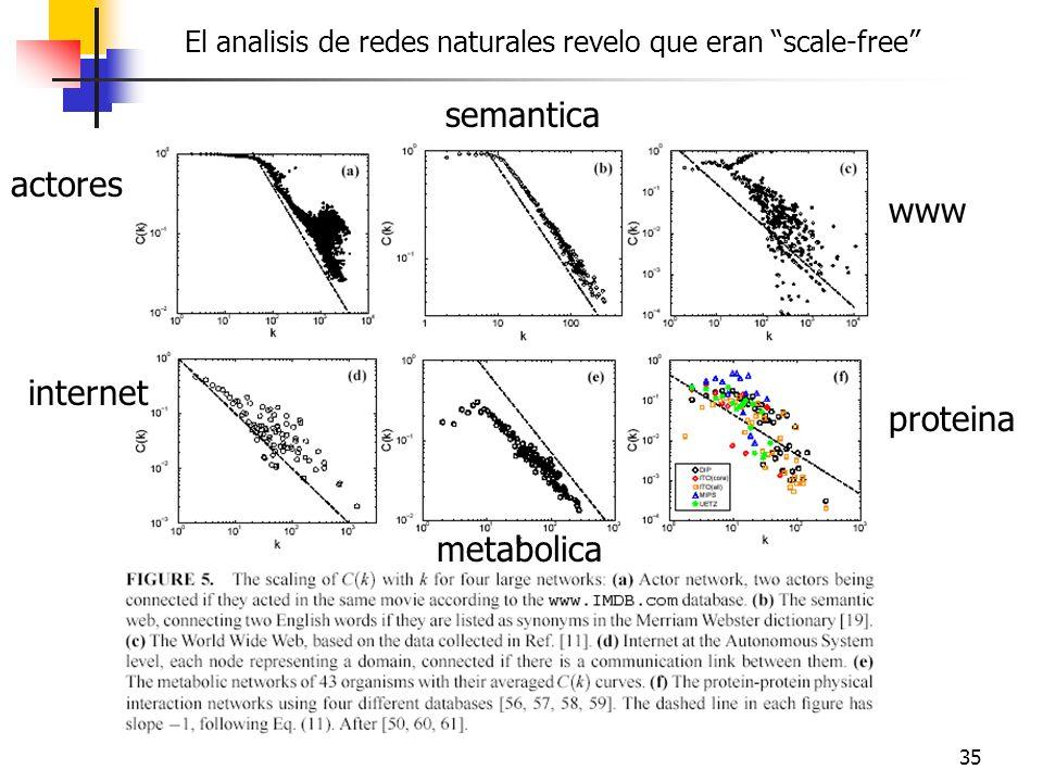 35 El analisis de redes naturales revelo que eran scale-free actores semantica www internet proteina metabolica