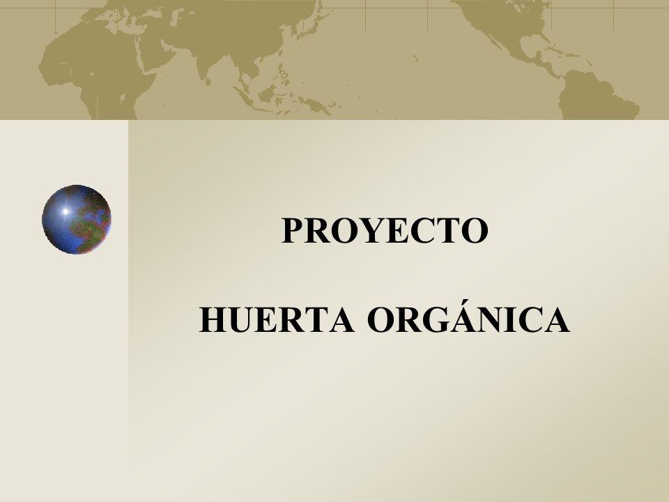 PROYECTO HUERTA ORGÁNICA