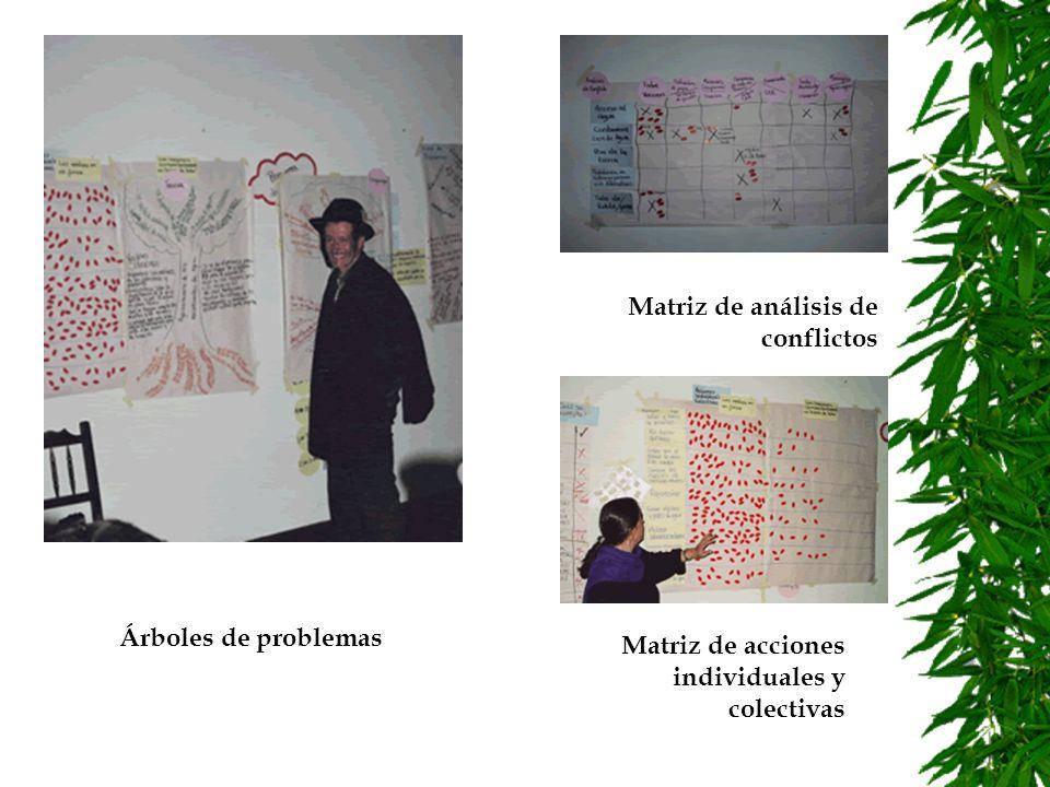 Análisis sistémico y simulación : Diagramas causales Diagramas de niveles y flujos Modelo de simulación en computador.