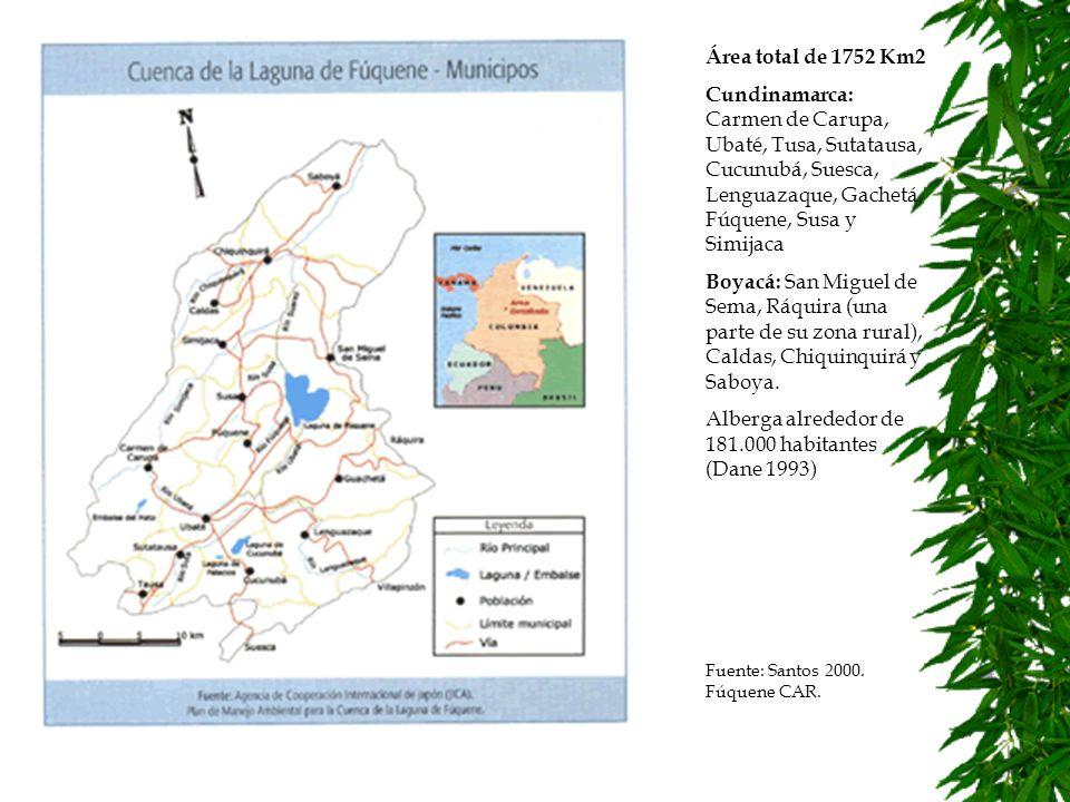 Diseño metodológico Diseño de instrumentos metodológicos que combinados permiten profundizar el análisis sobre la acción colectiva en el manejo de cuencas hidrográficas.