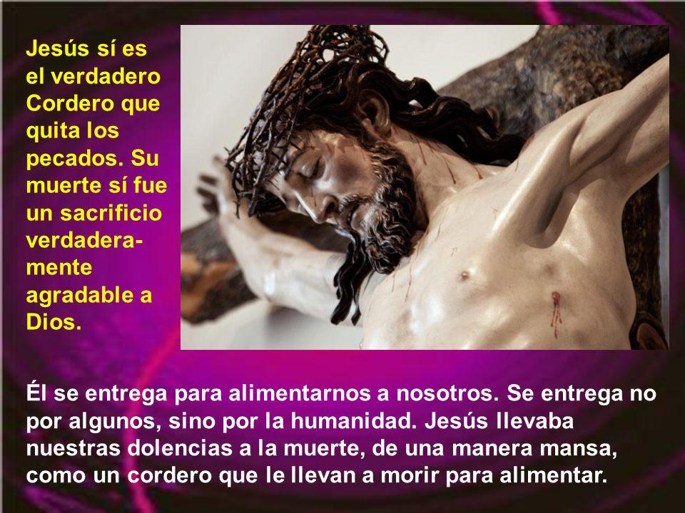 El cordero, el animal, no puede perdonar los pecados. Es un símbolo. En la pascua los israelitas participaban (y participan) más de ese sacrificio ofr