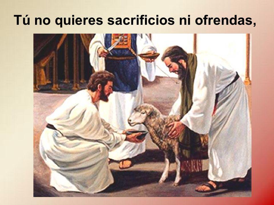 Tú no quieres sacrificios ni ofrendas,