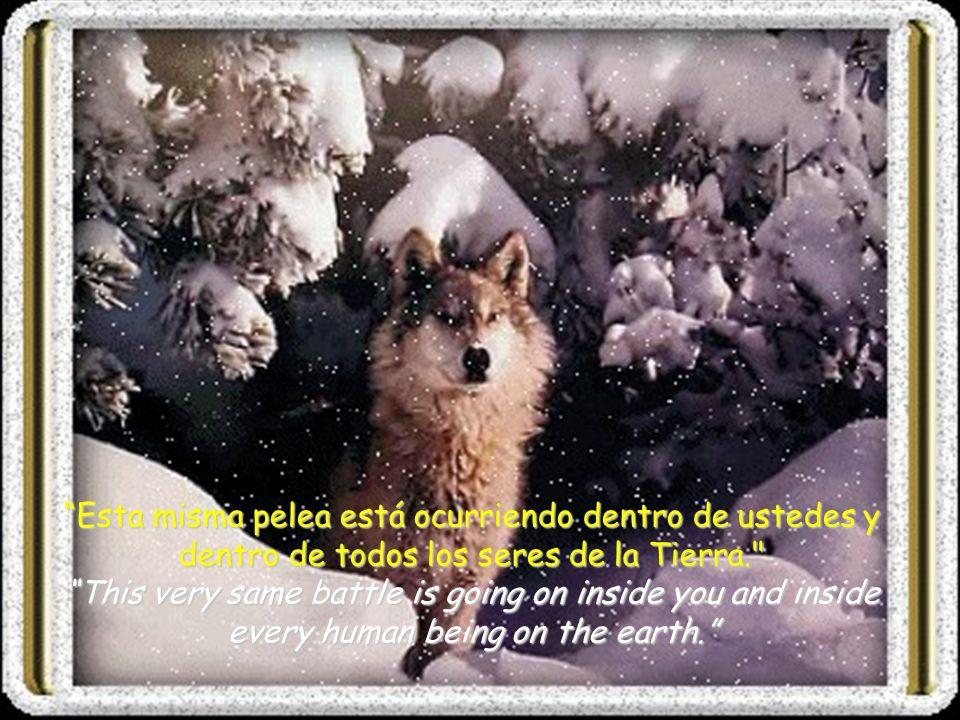 El otro lobo es la alegría, la bondad, la paz, el amor, la esperanza, la serenidad, la humildad, la amistad, la sinceridad y la solidaridad.