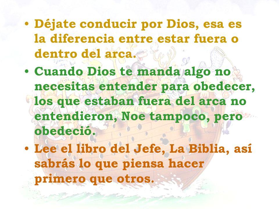 Déjate conducir por Dios, esa es la diferencia entre estar fuera o dentro del arca. Cuando Dios te manda algo no necesitas entender para obedecer, los