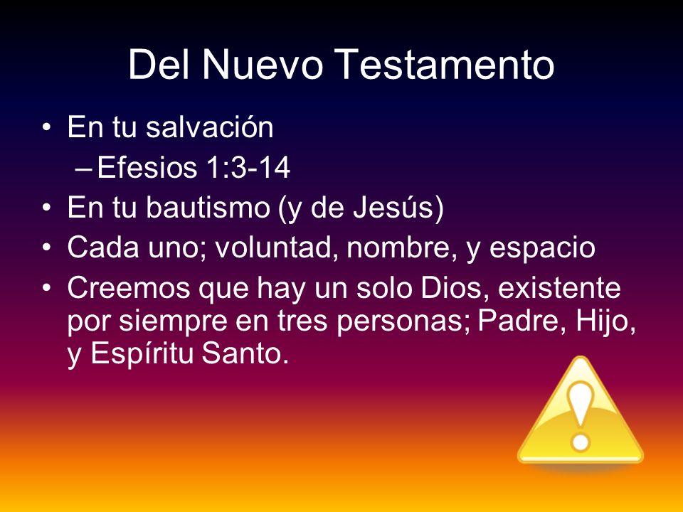 Del Nuevo Testamento En tu salvación –Efesios 1:3-14 En tu bautismo (y de Jesús) Cada uno; voluntad, nombre, y espacio Creemos que hay un solo Dios, e