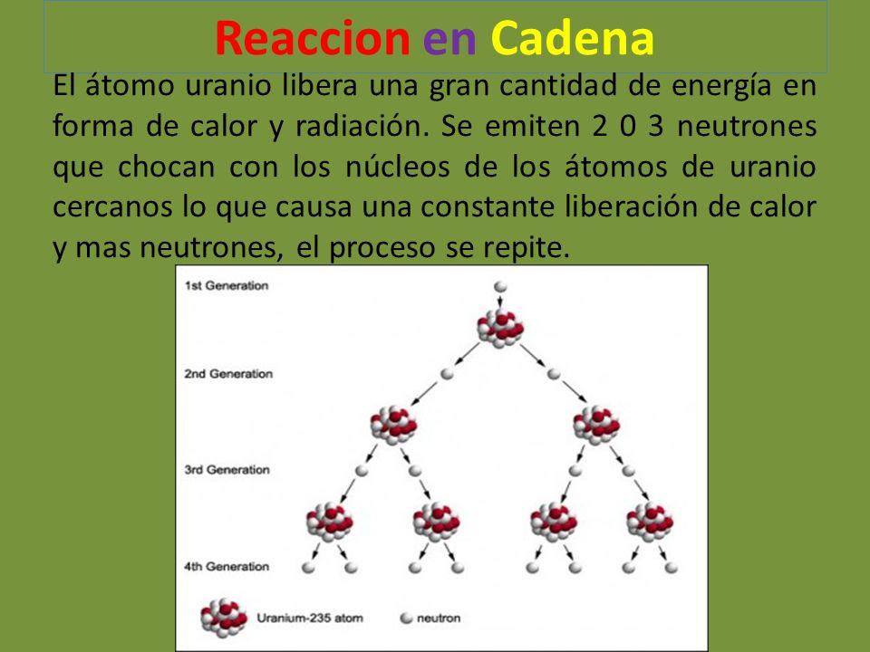 Reaccion en Cadena El átomo uranio libera una gran cantidad de energía en forma de calor y radiación. Se emiten 2 0 3 neutrones que chocan con los núc