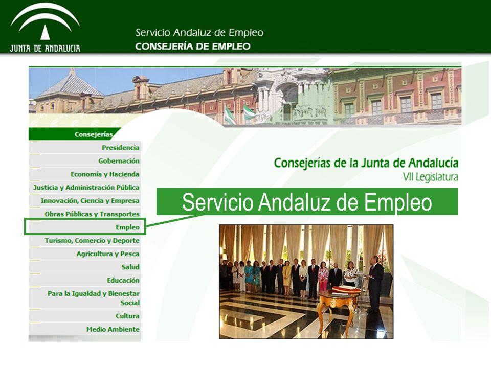 Consejería de Empleo Servicio Andaluz de Empleo Dirección General de Empleabilidad e Intermediación Laboral Servicio de Orientación Profesional e Inserción