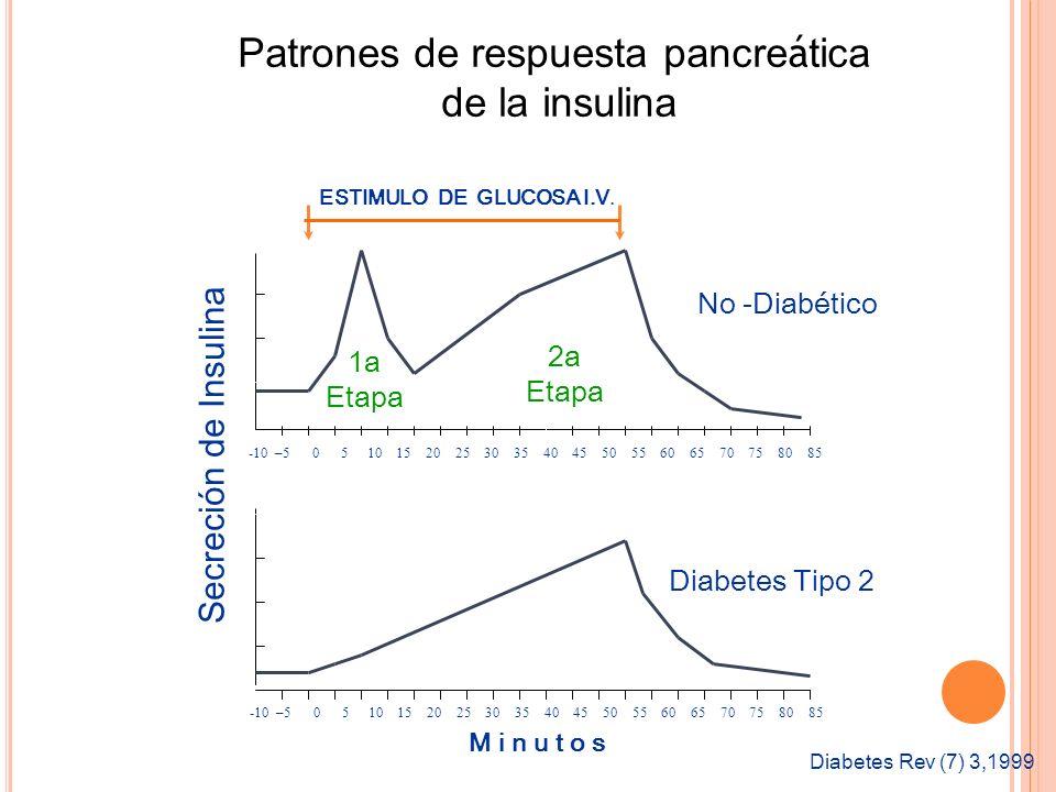 -10 –5 0 5 10 15 20 25 30 35 40 45 50 55 60 65 70 75 80 85 Secreción de Insulina ESTIMULO DE GLUCOSA I.V. -10 –5 0 5 10 15 20 25 30 35 40 45 50 55 60