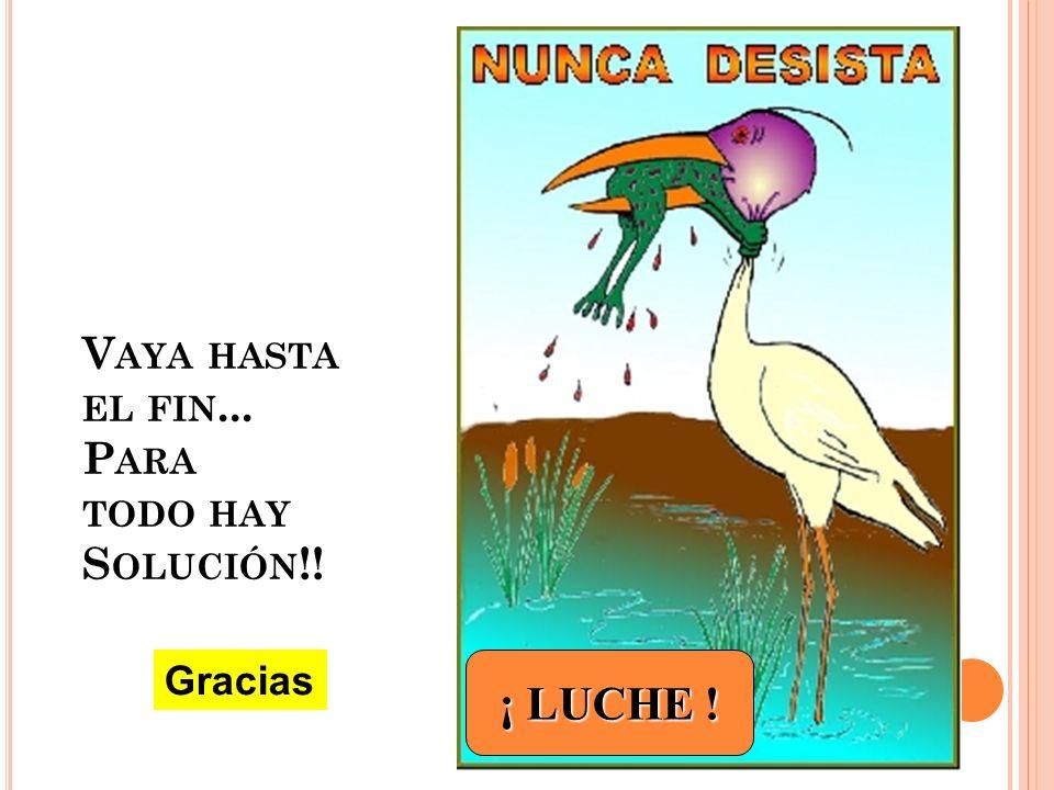 V AYA HASTA EL FIN... P ARA TODO HAY S OLUCIÓN !! ¡ LUCHE ! Gracias