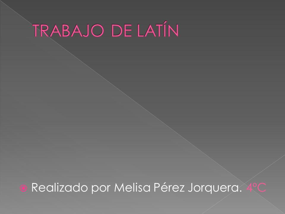 Realizado por Melisa Pérez Jorquera. 4ºC