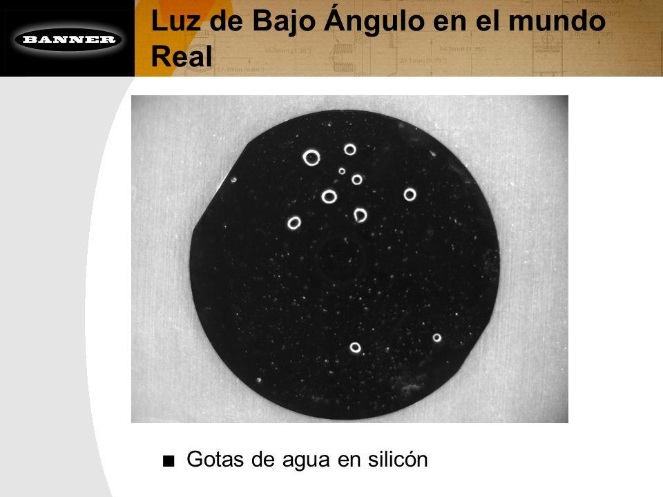 Luz de Bajo Ángulo en el mundo Real Gotas de agua en silicón