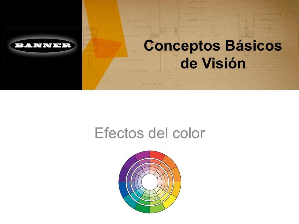 Conceptos Básicos de Visión Efectos del color