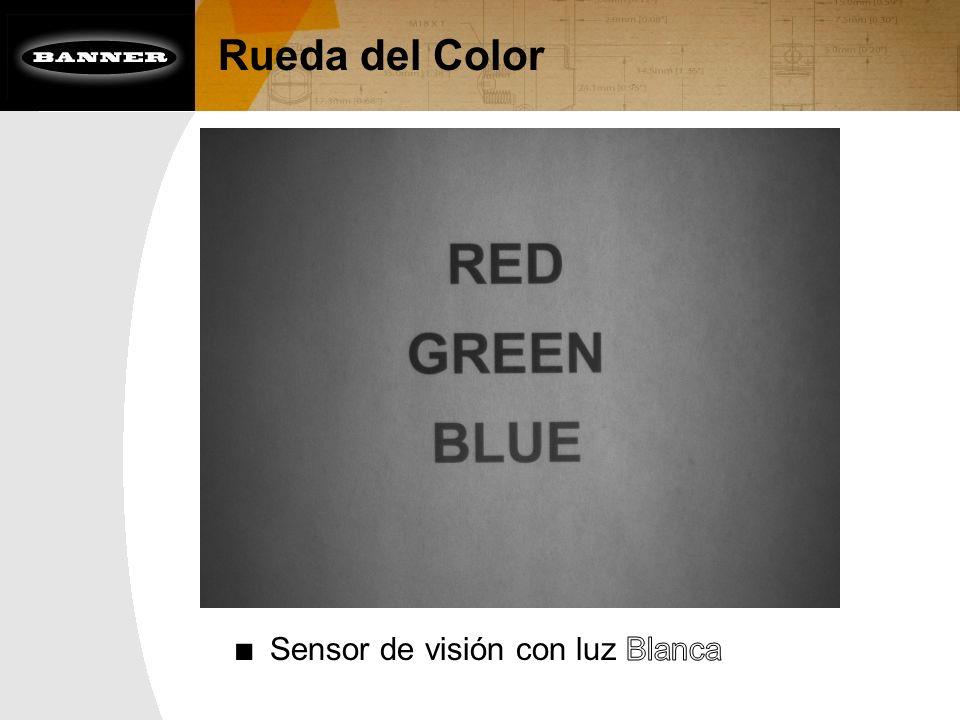 Rueda del Color