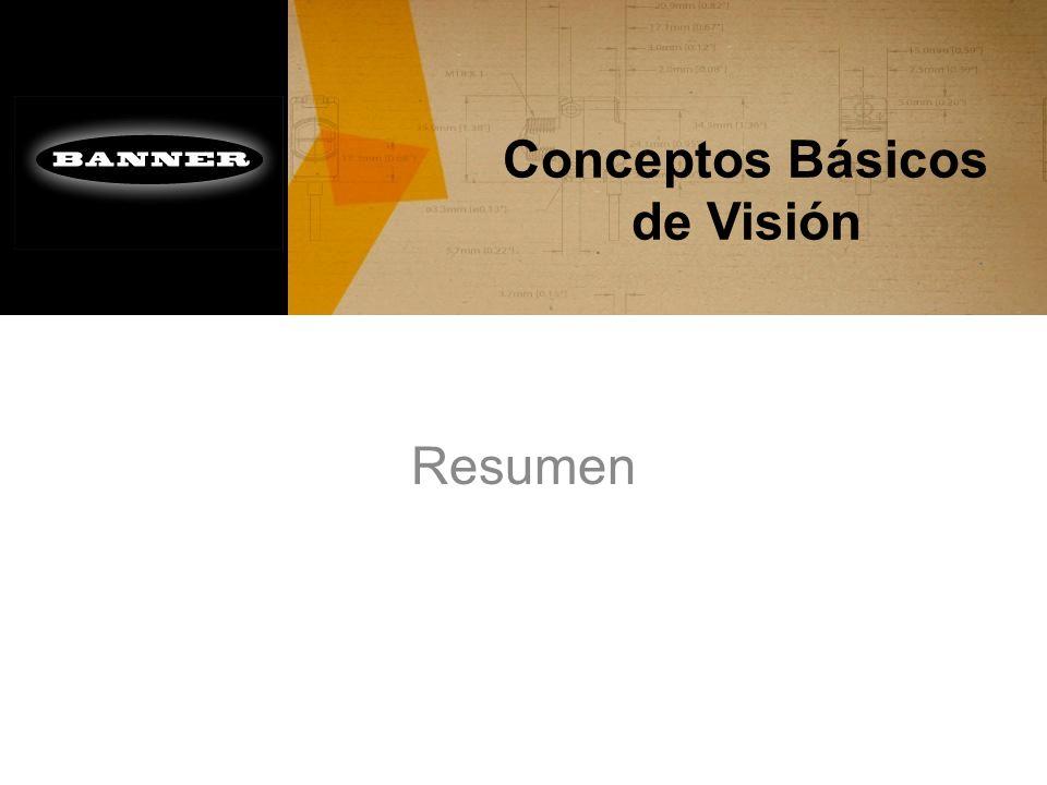 Conceptos Básicos de Visión Resumen