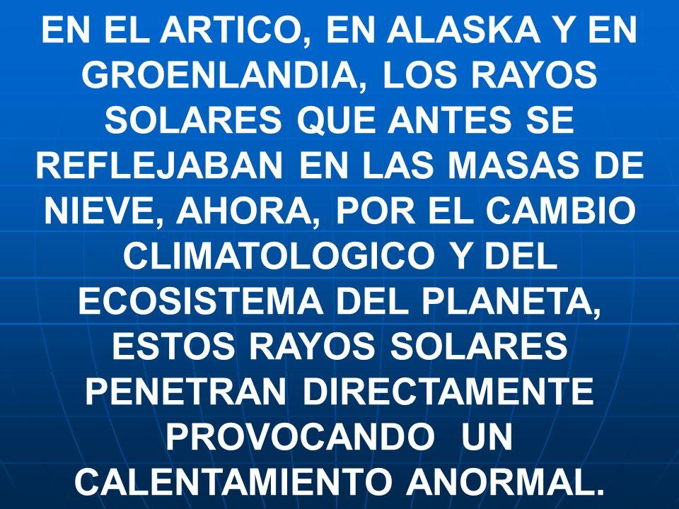 EN EL ARTICO, EN ALASKA Y EN GROENLANDIA, LOS RAYOS SOLARES QUE ANTES SE REFLEJABAN EN LAS MASAS DE NIEVE, AHORA, POR EL CAMBIO CLIMATOLOGICO Y DEL EC