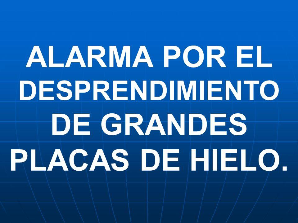 ALARMA POR EL DESPRENDIMIENTO DE GRANDES PLACAS DE HIELO.