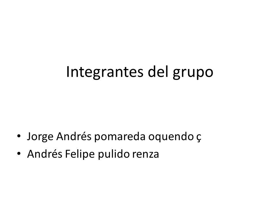 Integrantes del grupo Jorge Andrés pomareda oquendo ç Andrés Felipe pulido renza