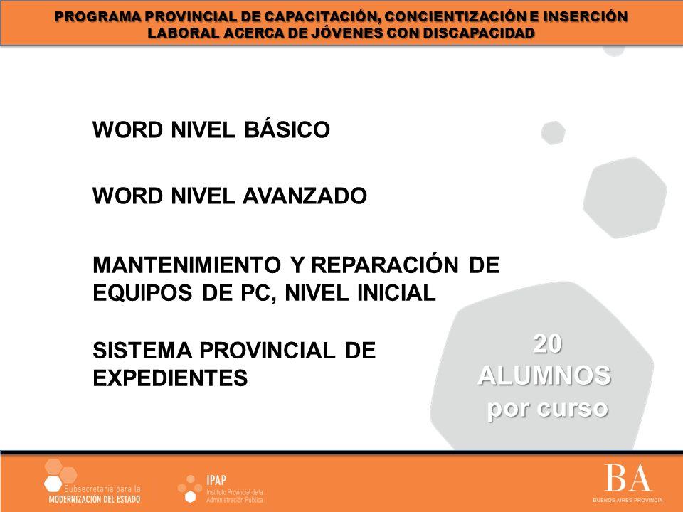 WORD NIVEL AVANZADO WORD NIVEL BÁSICO 20ALUMNOS por curso MANTENIMIENTO Y REPARACIÓN DE EQUIPOS DE PC, NIVEL INICIAL SISTEMA PROVINCIAL DE EXPEDIENTES PROGRAMA PROVINCIAL DE CAPACITACIÓN, CONCIENTIZACIÓN E INSERCIÓN LABORAL ACERCA DE JÓVENES CON DISCAPACIDAD