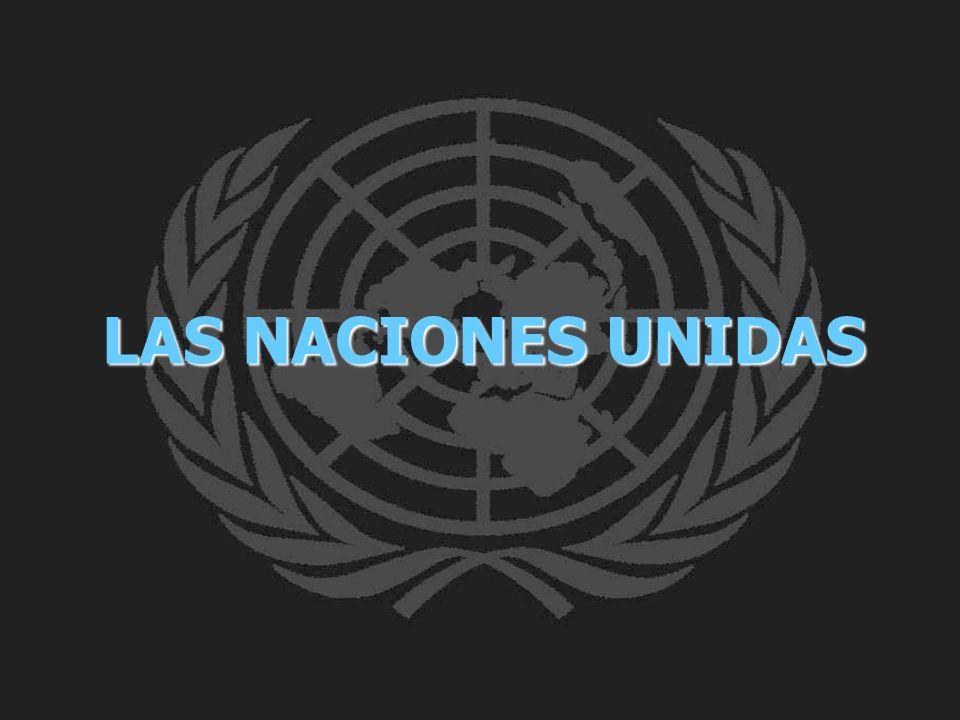 La Asamblea General EL Consejo de Seguridad El Consejo Económico y Social El Consejo de Administración Fiduciaria La Corte Internacional de Justicia (CIJ) La Secretaría El trabajo de las Naciones Unidas es llevado a cabo en el mundo por seis órganos principales: