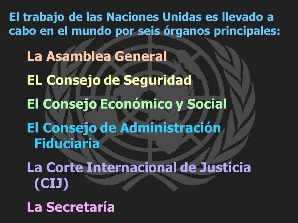 La Asamblea General EL Consejo de Seguridad El Consejo Económico y Social El Consejo de Administración Fiduciaria La Corte Internacional de Justicia (