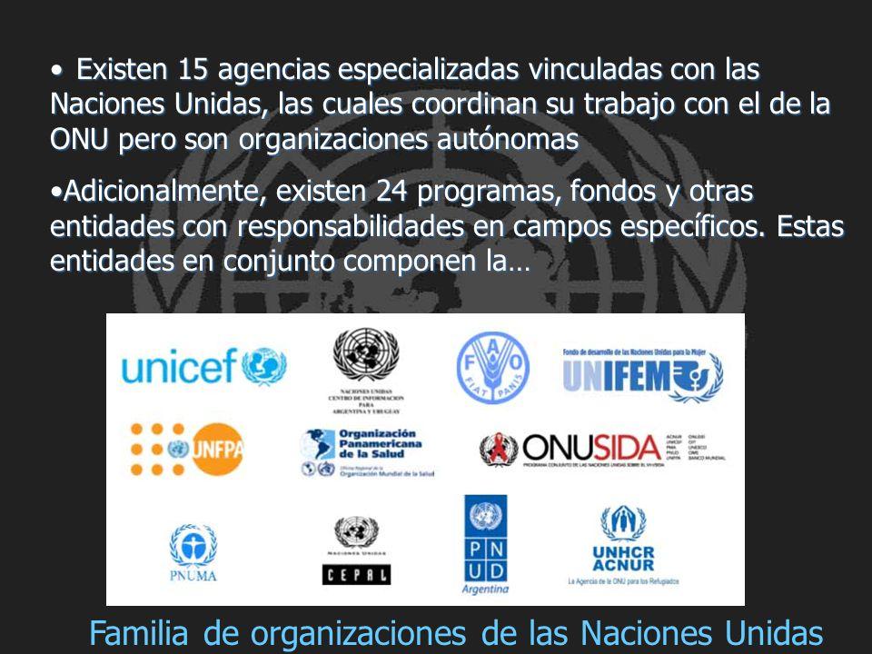 Existen 15 agencias especializadas vinculadas con las Naciones Unidas, las cuales coordinan su trabajo con el de la ONU pero son organizaciones autóno