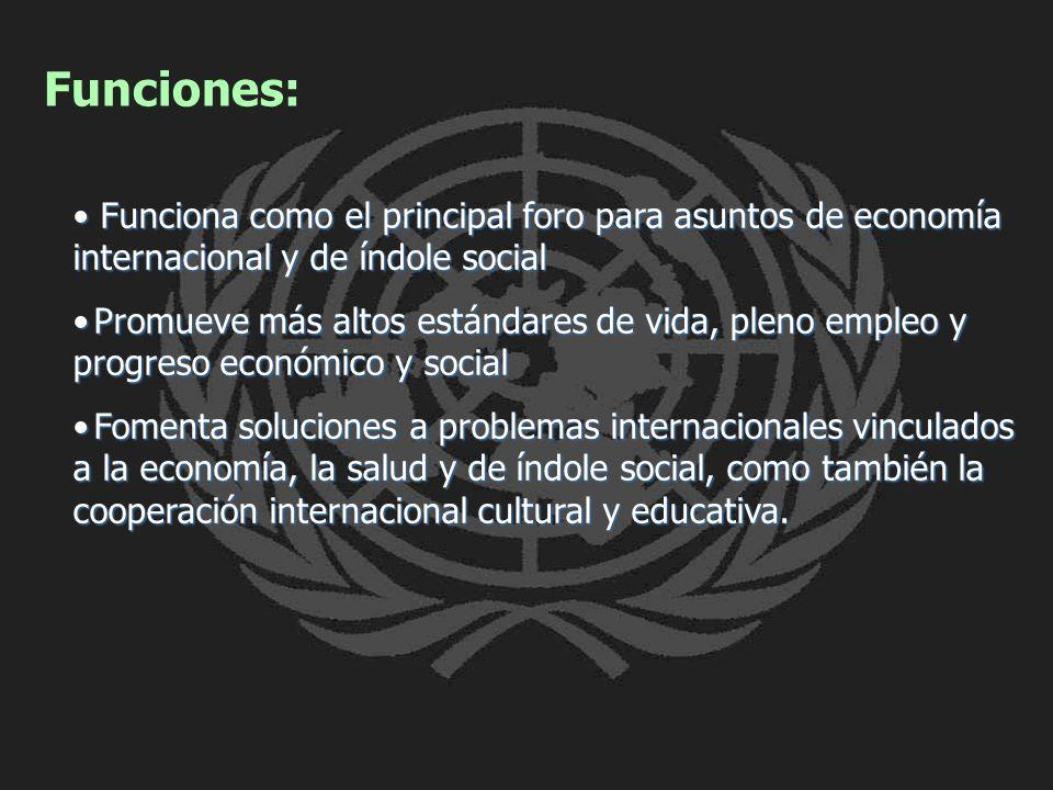 Funciones: Funciona como el principal foro para asuntos de economía internacional y de índole social Funciona como el principal foro para asuntos de e