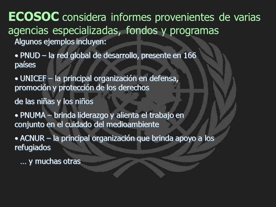 ECOSOC considera informes provenientes de varias agencias especializadas, fondos y programas Algunos ejemplos incluyen: PNUD – la red global de desarr