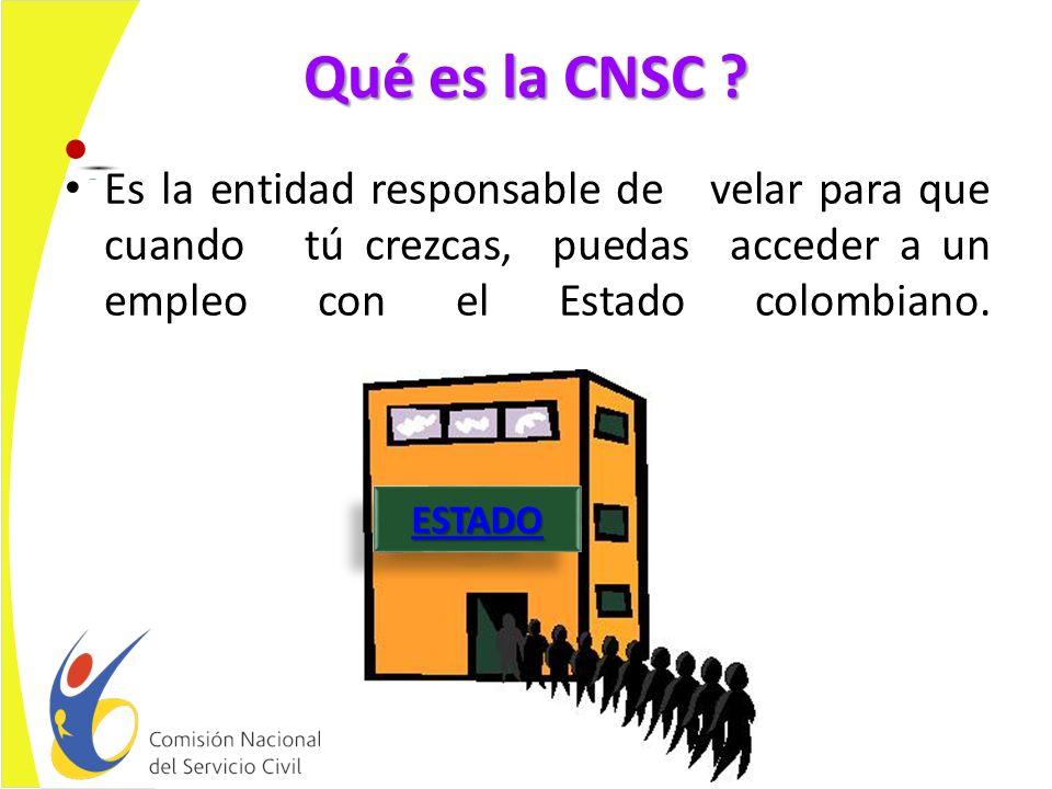 Qué es la CNSC .