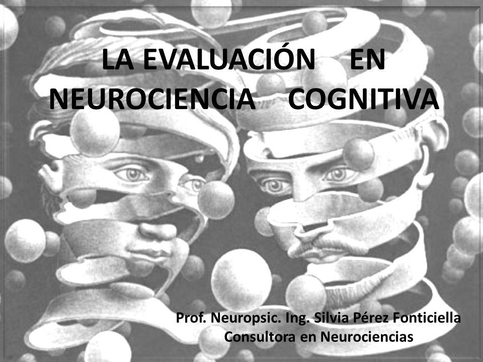 Prof.Neuropsic. Ing.