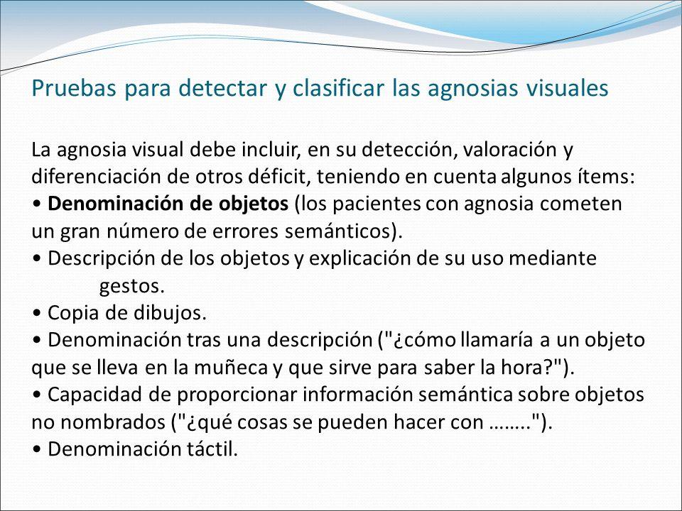 Pruebas para detectar y clasificar las agnosias visuales La agnosia visual debe incluir, en su detección, valoración y diferenciación de otros déficit, teniendo en cuenta algunos ítems: Denominación de objetos (los pacientes con agnosia cometen un gran número de errores semánticos).
