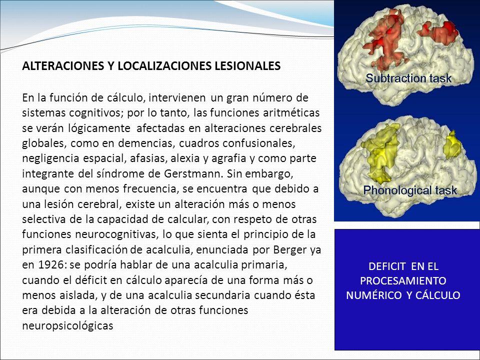 DEFICIT EN EL PROCESAMIENTO NUMÉRICO Y CÁLCULO ALTERACIONES Y LOCALIZACIONES LESIONALES En la función de cálculo, intervienen un gran número de sistemas cognitivos; por lo tanto, las funciones aritméticas se verán lógicamente afectadas en alteraciones cerebrales globales, como en demencias, cuadros confusionales, negligencia espacial, afasias, alexia y agrafia y como parte integrante del síndrome de Gerstmann.