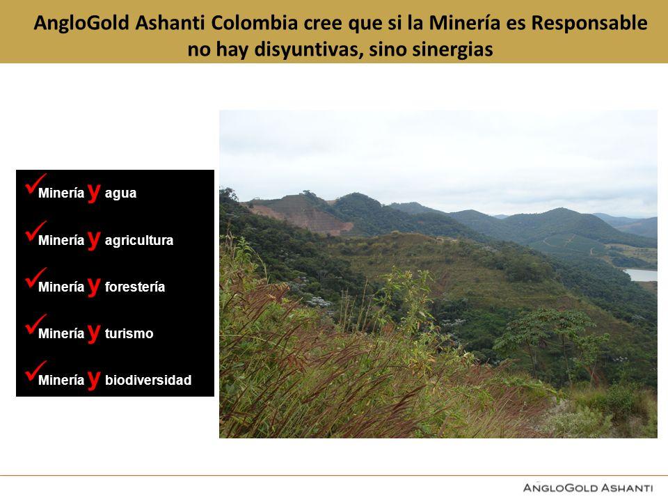 AngloGold Ashanti Colombia cree que si la Minería es Responsable no hay disyuntivas, sino sinergias Minería y agua Minería y agricultura Minería y forestería Minería y turismo Minería y biodiversidad