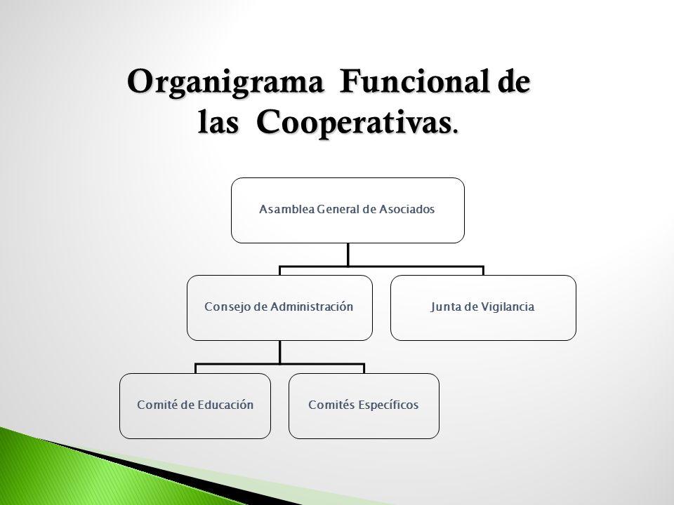 Asamblea General de Asociados Consejo de AdministraciónJunta de Vigilancia Comité de EducaciónComités Específicos Organigrama Funcional de las Coopera