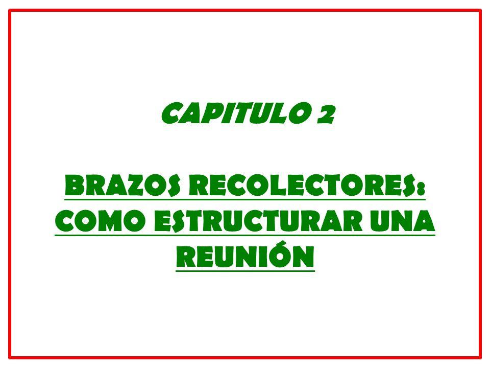 CAPITULO 2 BRAZOS RECOLECTORES: COMO ESTRUCTURAR UNA REUNIÓN