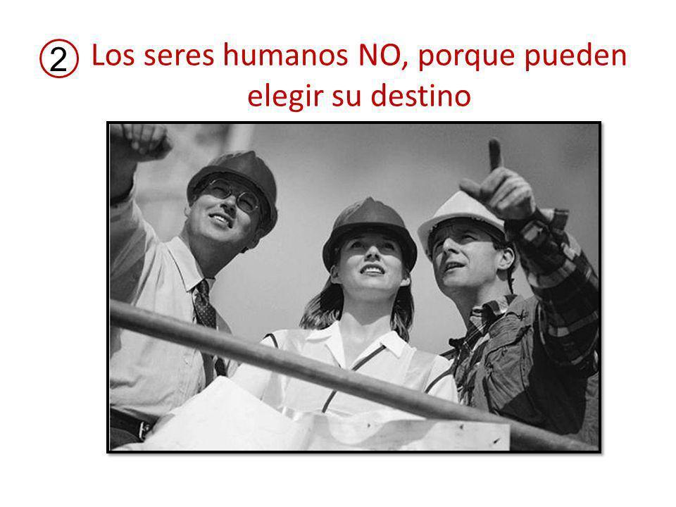 Los seres humanos NO, porque pueden elegir su destino 2