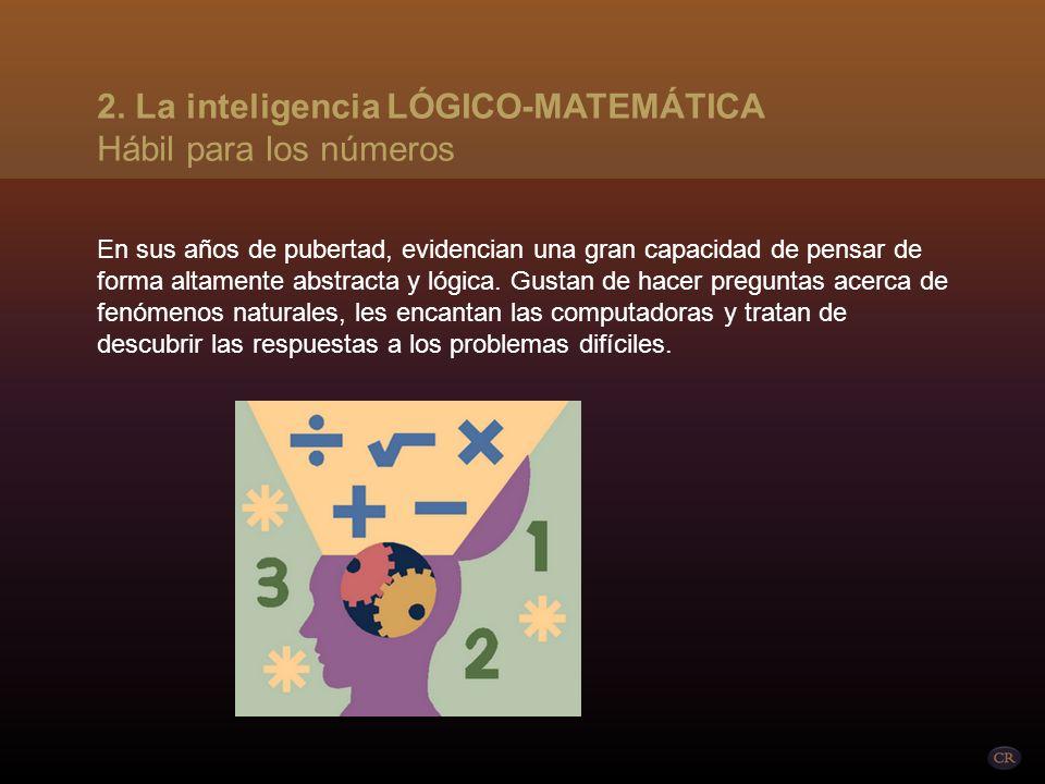 La inteligencia lógico-matemática se refiere a la capacidad de trabajar bien con los números y/o basarse en la lógica y el raciocinio. Esta es la inte