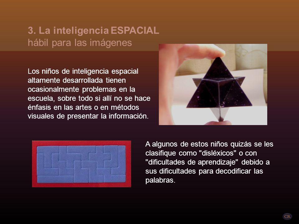 Requiere la habilidad para visualizar imágenes mentalmente o para crearlas en alguna forma bio tridimensional. 3. La inteligencia ESPACIAL hábil para