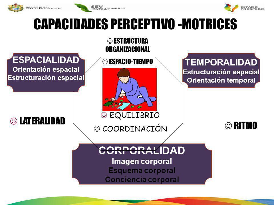 EQUILIBRIO COORDINACIÓN ESTRUCTURA ORGANIZACIONAL ESPACIO-TIEMPO CORPORALIDAD Imagen corporal Esquema corporal Conciencia corporal RITMO CAPACIDADES P