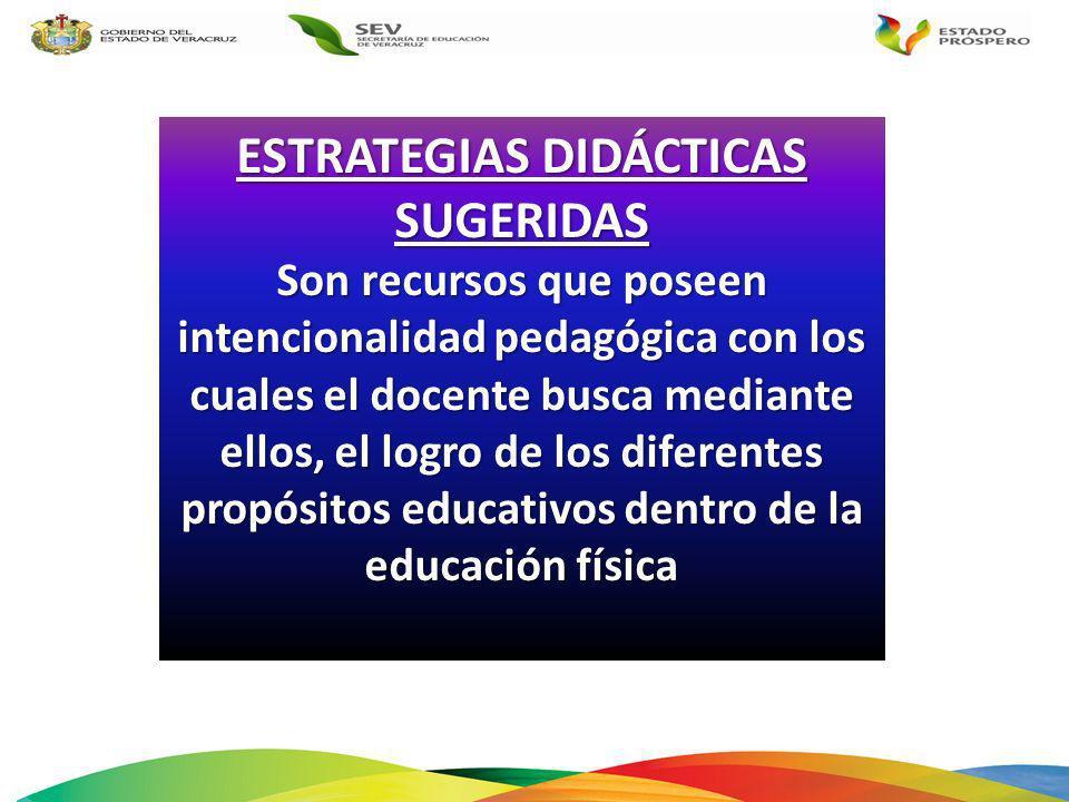 ESTRATEGIAS DIDÁCTICAS SUGERIDAS Son recursos que poseen intencionalidad pedagógica con los cuales el docente busca mediante ellos, el logro de los di