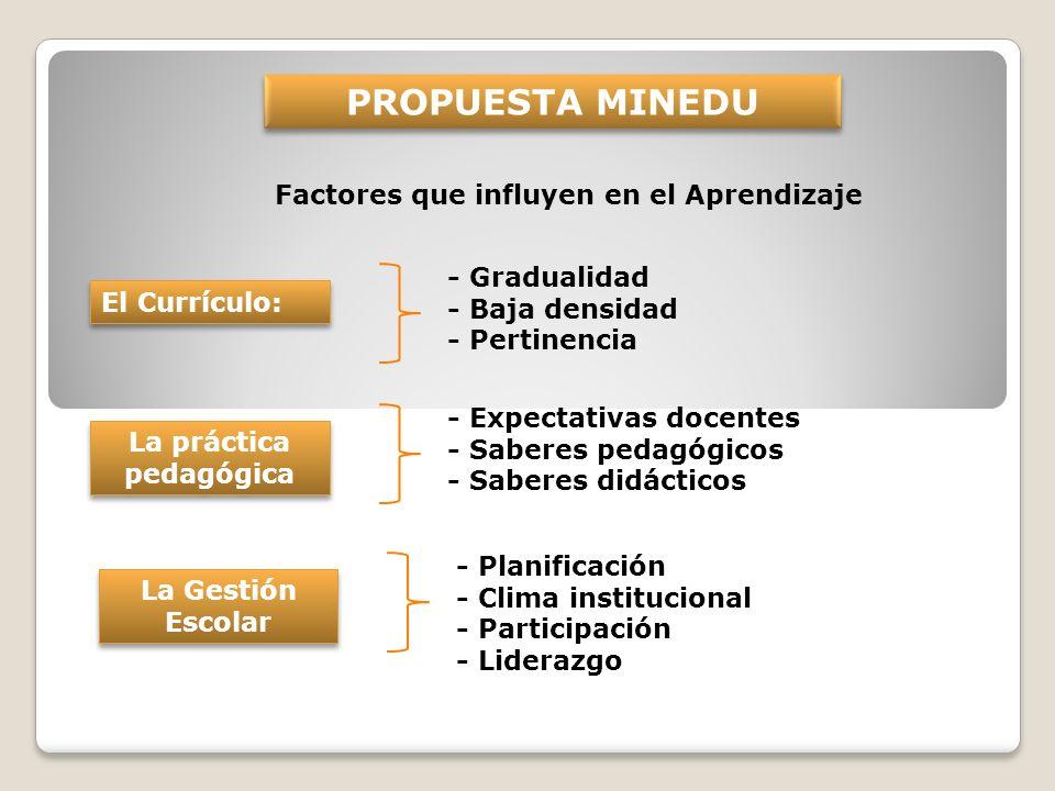 Factores que influyen en el Aprendizaje PROPUESTA MINEDU El Currículo: - Gradualidad - Baja densidad - Pertinencia La práctica pedagógica - Expectativ