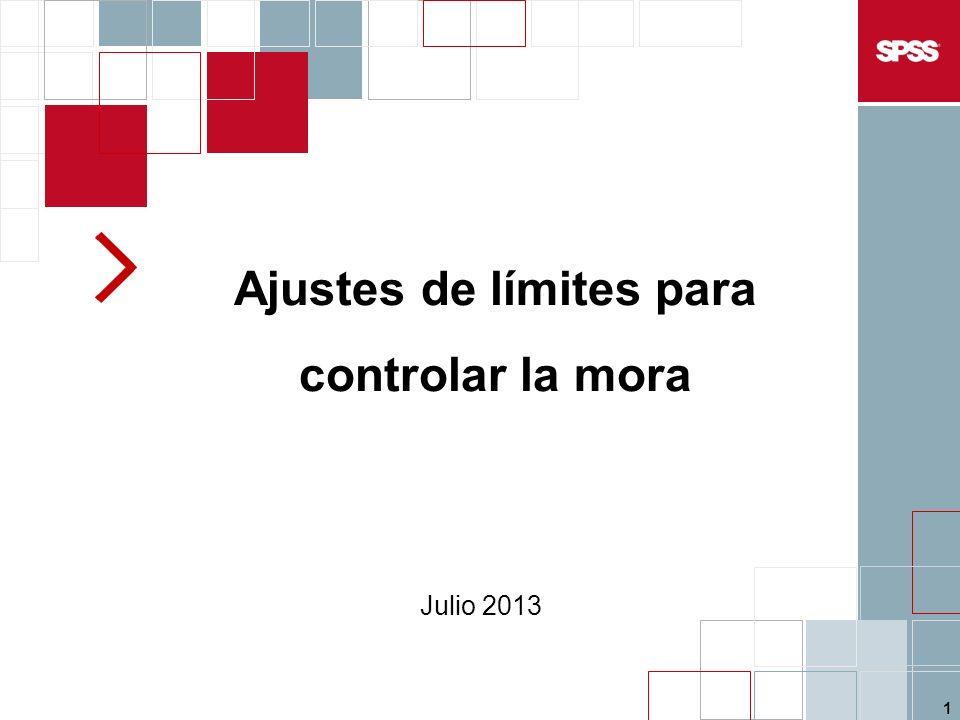 1 Ajustes de límites para controlar la mora Julio 2013
