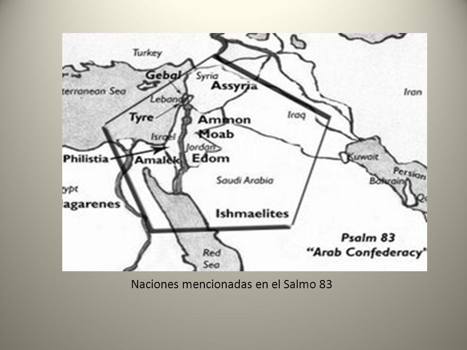 Motivos del conflicto: Jerusalem y la Tierra Santa Salmo 83 v.12 Que han dicho: Heredemos para nosotros Las moradas de Dios.