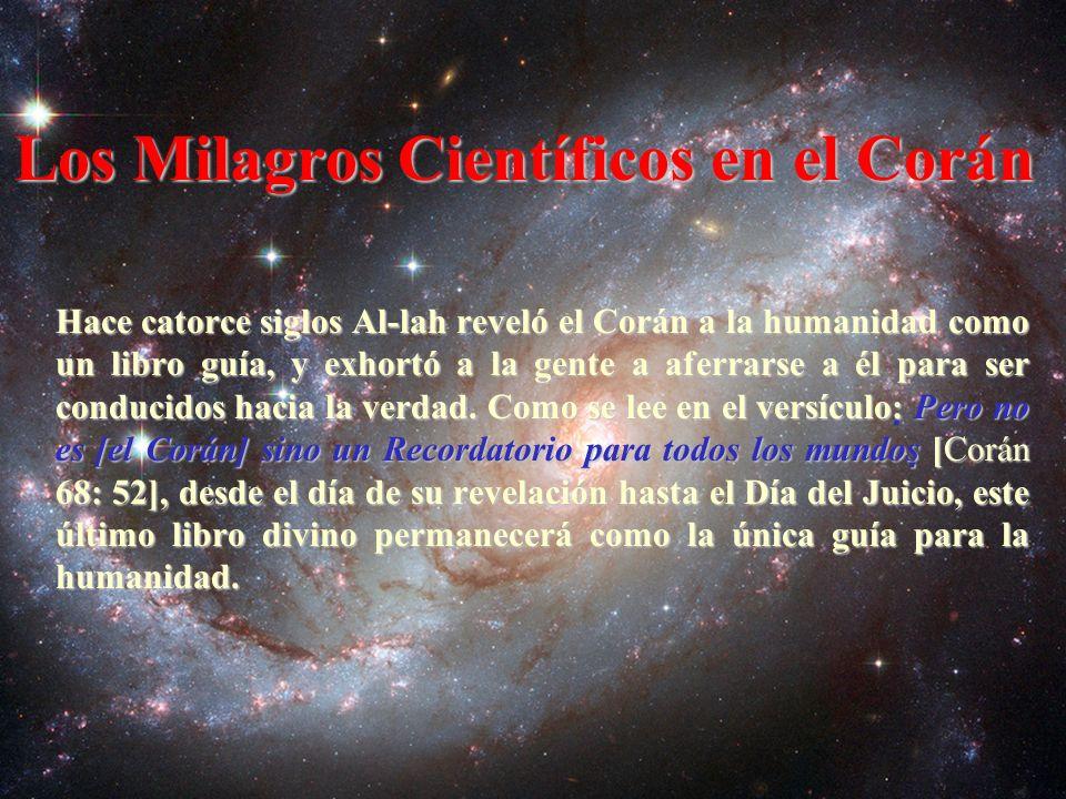 ¿Es el Corán verdaderamente la palabra literal de Al-lah, revelada por Él mismo.