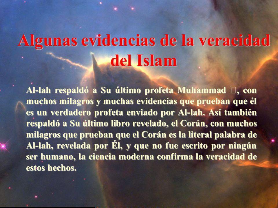 Al-lah respaldó a Su último profeta Muhammad, con muchos milagros y muchas evidencias que prueban que él es un verdadero profeta enviado por Al-lah.