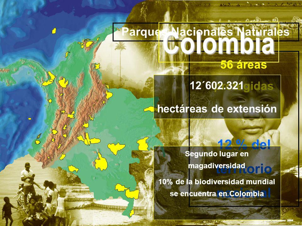 PARQUES NACIONALES NATURALES DE COLOMBIA Parques Nacionales Naturales 56 áreas protegidas 12 % del territorio nacional CRBV Ecoturismo 2004 12´602.321