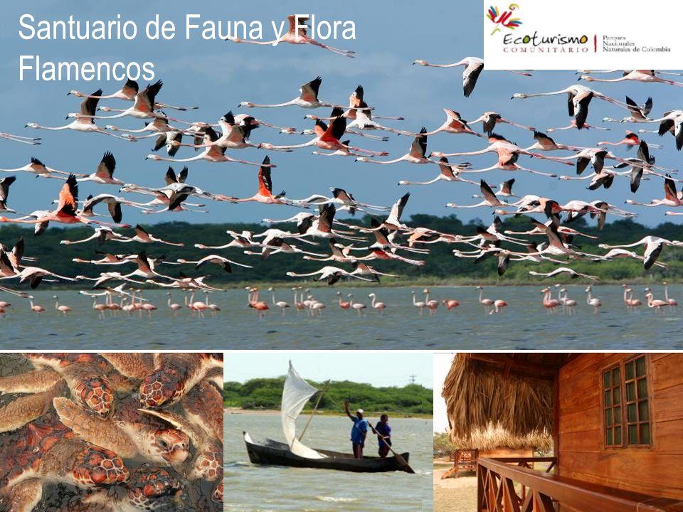 Santuario de Fauna y Flora Flamencos