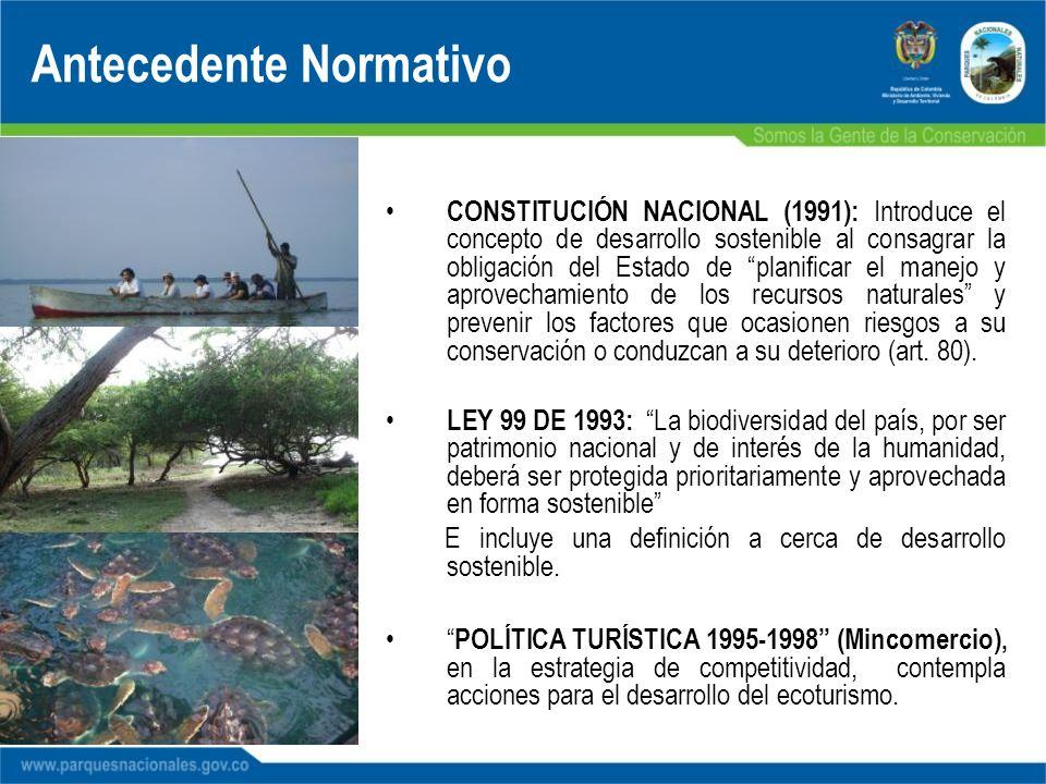 Antecedente Normativo CONSTITUCIÓN NACIONAL (1991): Introduce el concepto de desarrollo sostenible al consagrar la obligación del Estado de planificar
