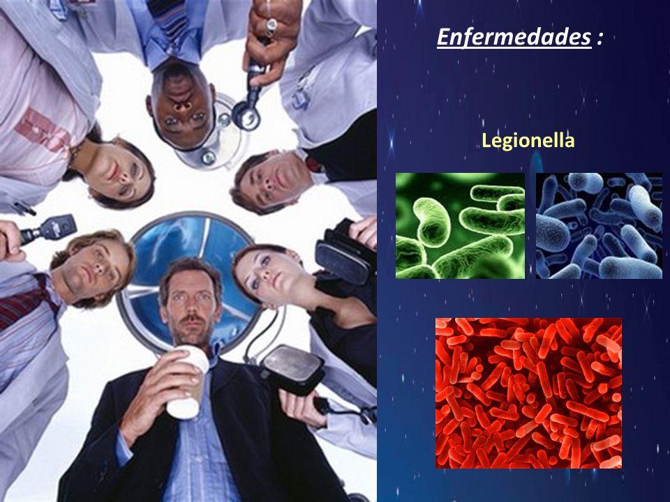 Legionella Enfermedades :