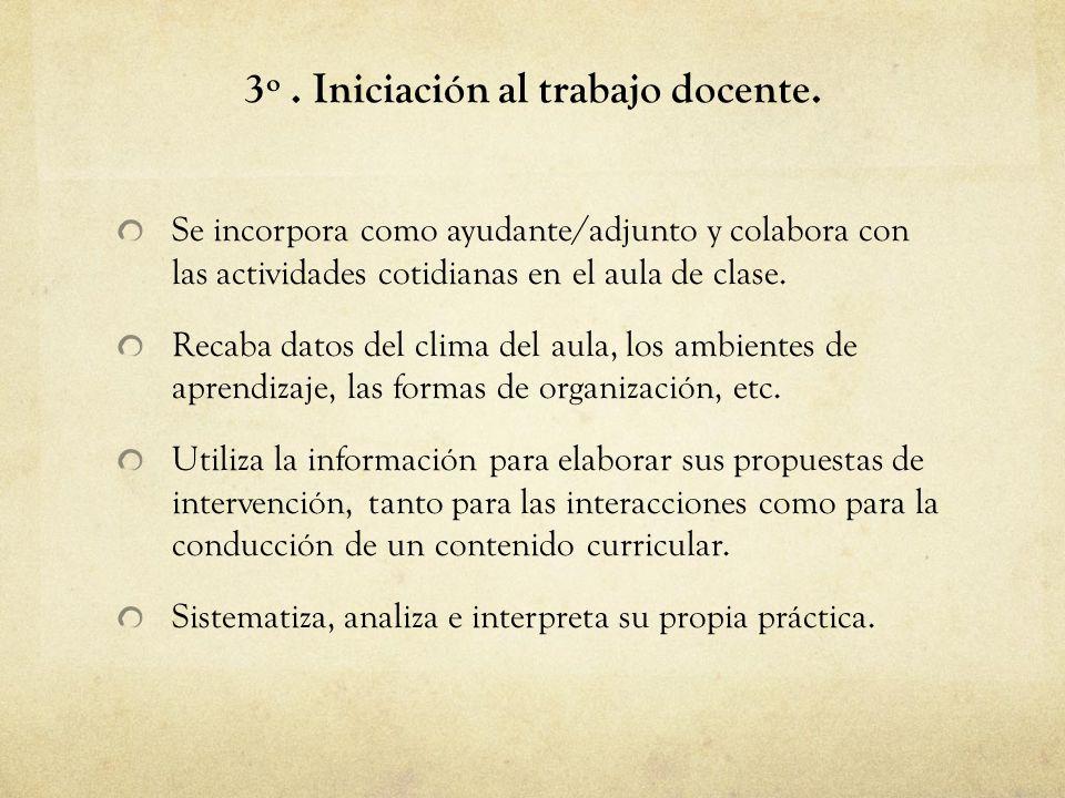 3º.Iniciación al trabajo docente.