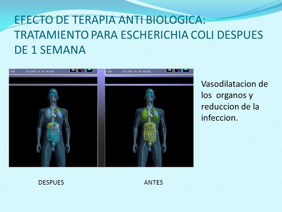 EFECTO DE TERAPIA ANTI BIOLOGICA: TRATAMIENTO PARA ESCHERICHIA COLI DESPUES DE 1 SEMANA DESPUESANTES Vasodilatacion de los organos y reduccion de la i